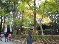 2015-11中尊寺ー047