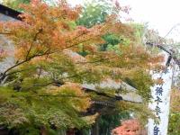 2015-11中尊寺ー114