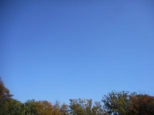 ③秋のクリーン20151025