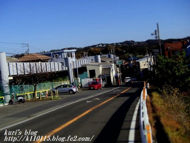 片瀬山 (3)