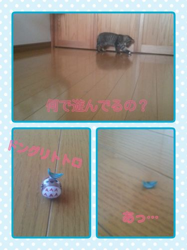 15-10-04-07-00-59-200_deco.jpg