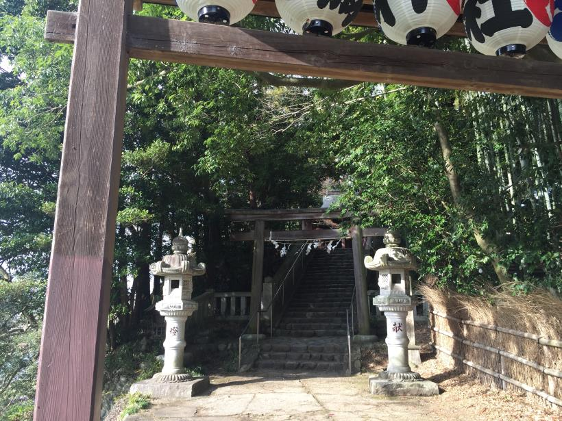 tamagawasakura28.jpg
