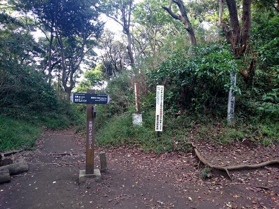 honngoudaikamakuraDSC_0609.jpg