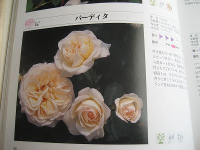 s-IMG_8739.jpg