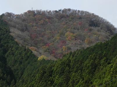 伊豆が岳付近の紅葉