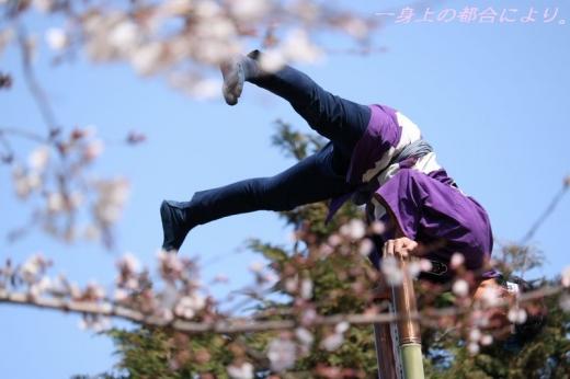 IMG_1181川越春まつり