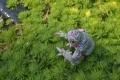 カエル_緑×ピンク04