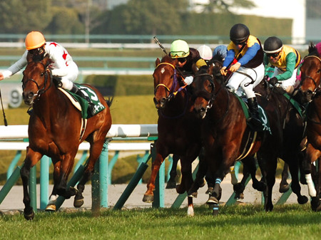 【高松宮記念】ミッキーアイル音無調教師「一番速い馬だと思っています、1200mなら逃げ切れると信じています」