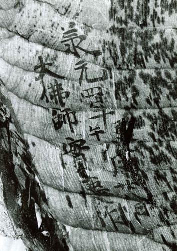 修善寺・大日如来坐像の体内に遺された実慶作の墨書銘