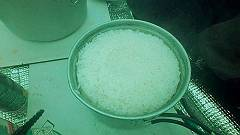 4炊いた白米-s