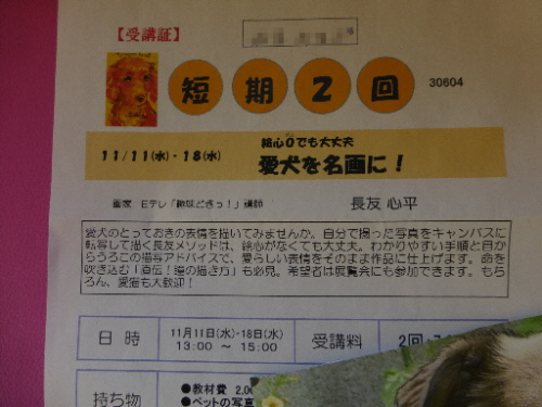 P1100426(1).jpg