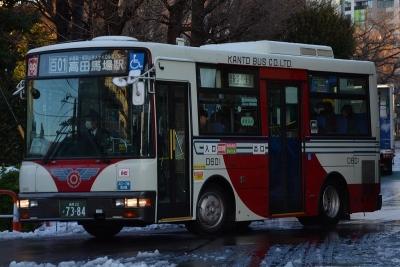 DSC_2594-m.jpg