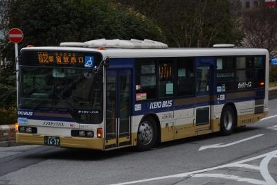 DSC_2900.jpg