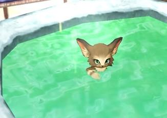温泉キャラと入浴 (3)