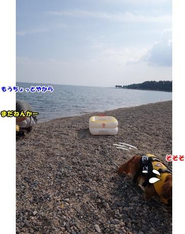 DSC00964_20151019151348743.jpg