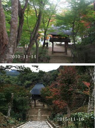 ryousokuji-3.jpg