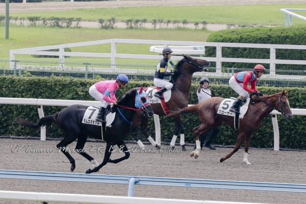 TamuroMiracle150830-02R_14A9450L960