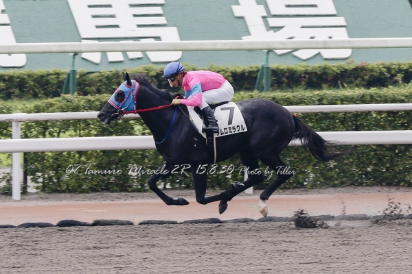 TamuroMiracle150830-02R_14A9630raL960