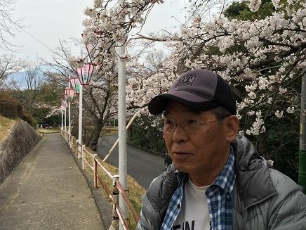3292016比治山の桜S7