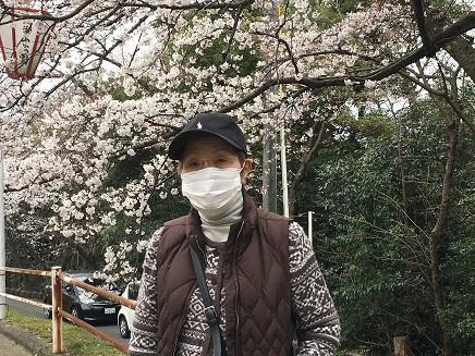 3292016比治山の桜S14