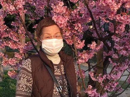 3282016二河の桜S4