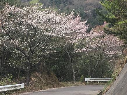 3312016江田島S1