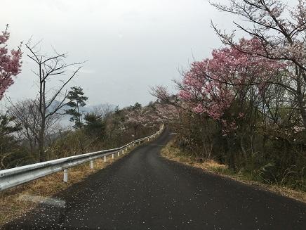 3312016江田島S13