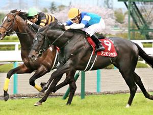 大阪杯を制したアンビシャス、次走は毎日王冠(10月)が濃厚。春に適距離のG1なし