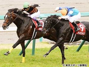 【天皇賞(春)】キタサンブラックは引き続き武豊