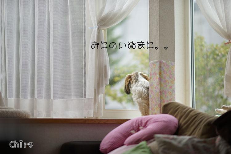 09-28_4223.jpg