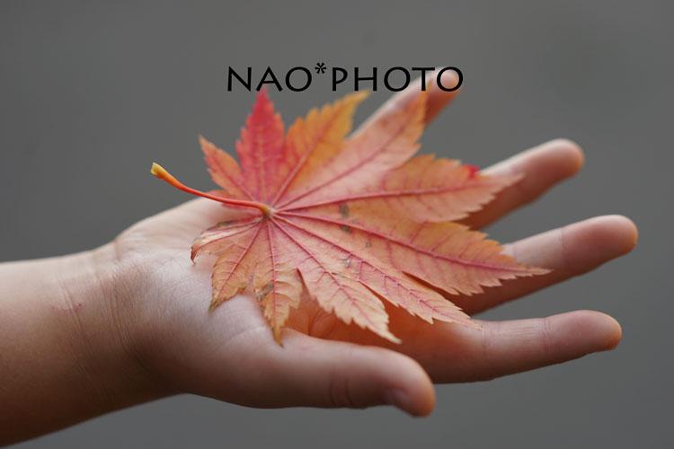10-17_4520.jpg