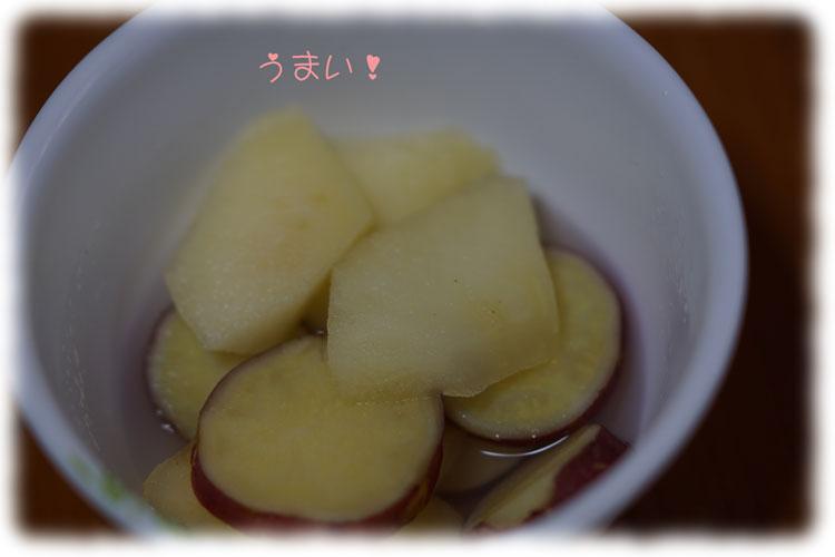 11-15_5187.jpg