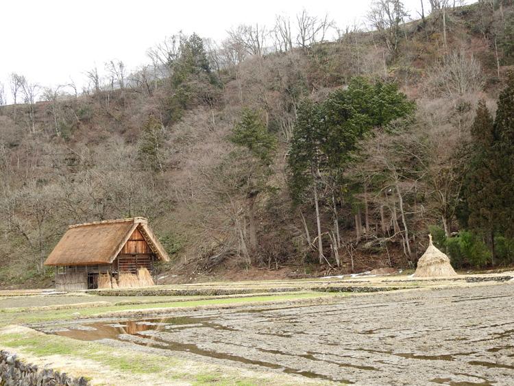 春よ来い~白川郷にも、春の足音がゆっくりと近づいています♪⑤