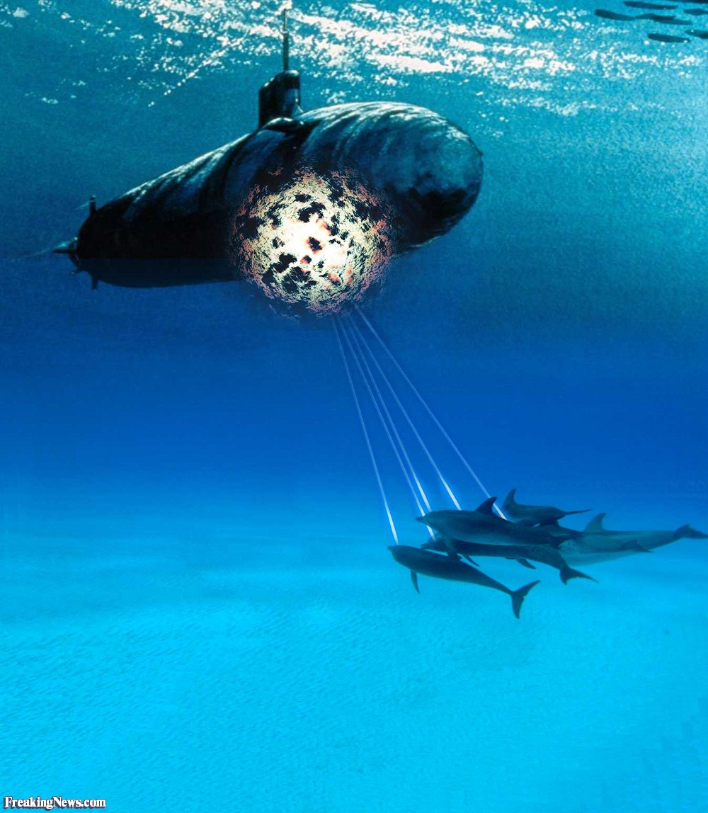 Dolphins-Attacking-Submarine-with-Sonar-Pulses-95864.jpg