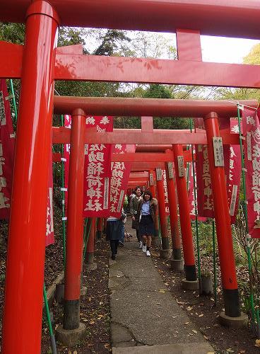 20151121_kamakura-013.jpg