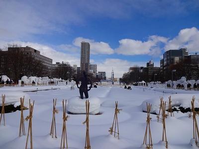 雪祭 (79)