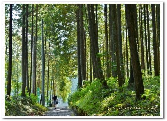 木もれびの里 箏路(ことじ)