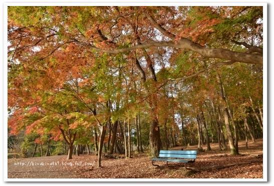 真岡 井頭公園