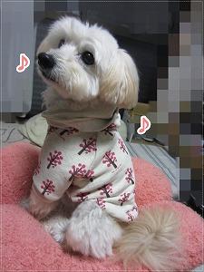 LOVE&PEACHさんのお洋服4