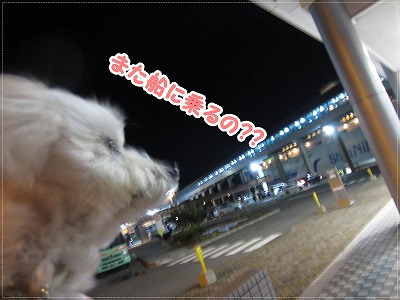 2015小樽最終日7