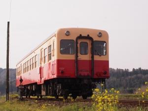 P3300313.jpg