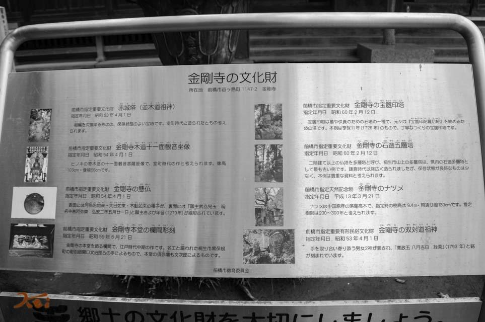 20150926彼岸花_金剛寺13