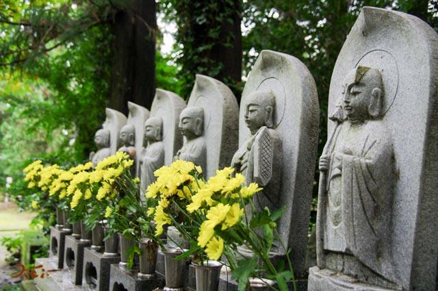 20150926彼岸花_金剛寺14