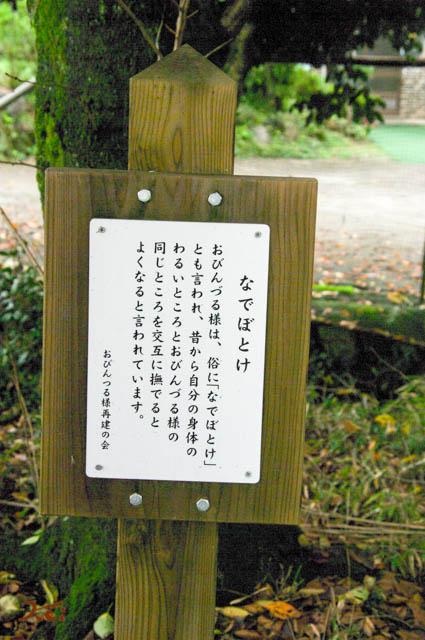 20150926彼岸花_金剛寺04