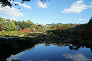 依水園の秋2015