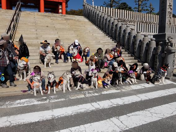 151029 犬山06