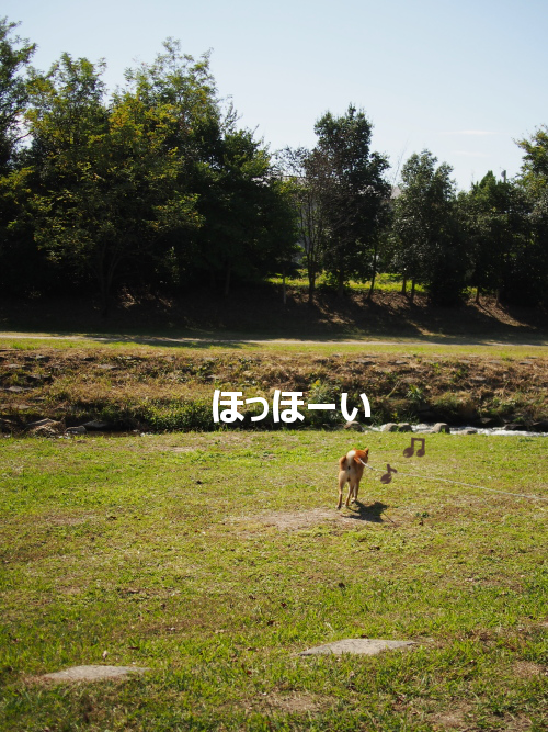 20151026-001.png