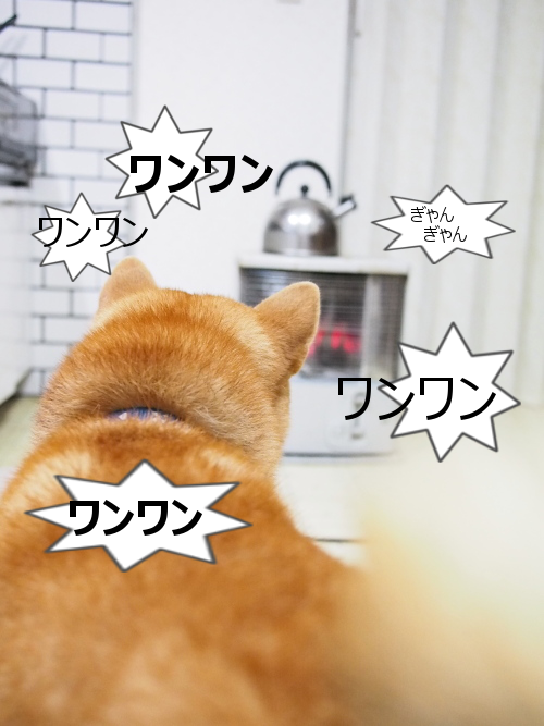 20151124-005.png