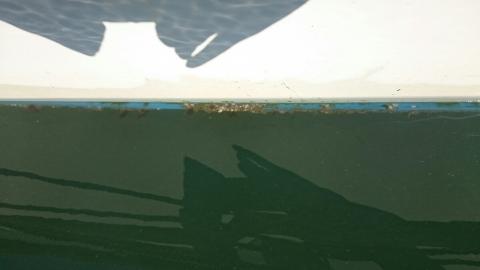 船底塗装の準備1