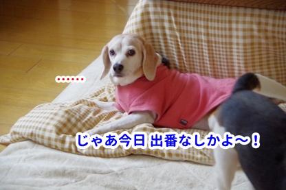 やすみ 6